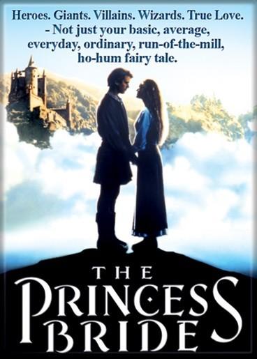 the hero journey in princess bride essay