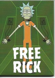 Rick and Morty Animated TV Series Birdperson Figure Refrigerator Magnet UNUSED